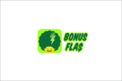 bonus-flas-ikon