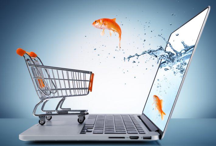 E-Ticaret Paketi Satın Alırken Neye Dikkat Etmeliyiz?