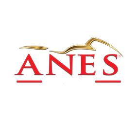 Anes Motorshop